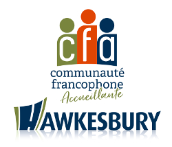 LOGO CFA scale